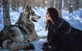 Картинка зима, лес, язык, фиолетовый, девушка, снег, деревья, серый, стволы, волк, брюнетка, пасть, сугробы, лежит, профиль, …