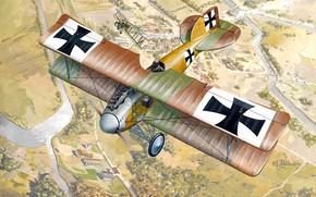 Картинка истребитель, Биплан, WWI, Albatros, Albatros D.II, Luftstreitkräfte
