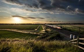 Картинка поле, лето, закат, поезд, железная дорога