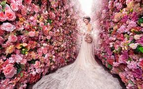 Картинка девушка, цветы, белое, розы, красота, букет, сад, платье, розовые, азиатка, невеста, роскошь, много, свдебное