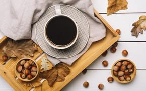 Картинка осень, листья, фон, дерево, кофе, colorful, чашка, орехи, wood, background, autumn, leaves, cup, coffee, maple