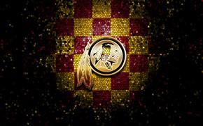 Картинка wallpaper, sport, logo, NFL, glitter, checkered, Washington Redskins