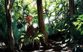 Картинка природа, аниме, девочка, Touhou