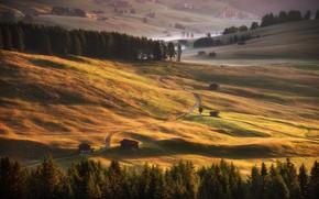 Картинка дорога, поле, осень, лес, свет, горы, туман, холмы, склоны, поля, дома, даль, ели, склон, Альпы, ...