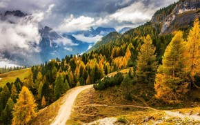 Картинка дорога, лес, небо, горы, природа