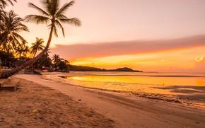 Картинка песок, море, пляж, лето, небо, закат, пальмы, берег, summer, beach, sea, sunset, seascape, beautiful, sand, …