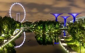 Картинка пруд, фото, Сингапур, Singapore, Gardens by the Bay