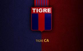 Картинка wallpaper, sport, logo, football, Club Atletico Tigre