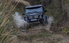 Картинка трава, вода, брызги, чёрный, Mercedes-Benz, внедорожник, 4x4, G500, G-Class, 2015, G 500, 4x4², V8 biturbo
