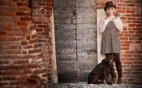 Картинка девушка, стена, собака, Лабрадор-ретривер