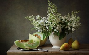 Картинка Still Life, Melon, Pears