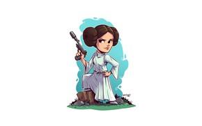 Картинка Star wars, Leia, Derek Laufman