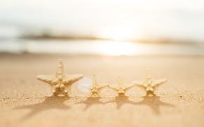 Картинка песок, море, волны, пляж, лето, берег, звезда, summer, beach, sea, sand, marine, starfish