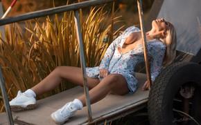 Картинка девушка, поза, ноги, повозка, кроссовки, Jack Russell