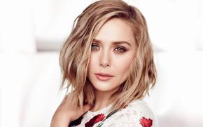 Картинка взгляд, девушка, фото, волосы, портрет, красивая, Elizabeth Olsen, Chris Nicholls