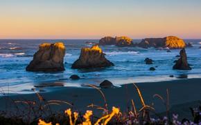 Картинка песок, море, волны, пляж, небо, трава, свет, скалы, рассвет, берег, побережье, даль, утро, освещение, горизонт, …