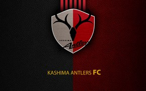 Картинка wallpaper, sport, logo, football, Kashima Antlers