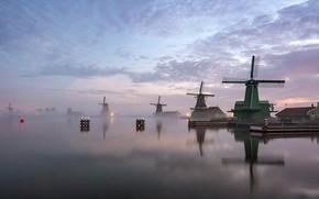 Обои Netherlands, North Holland, Zaanstad