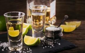 Картинка lemon, salt, tequila