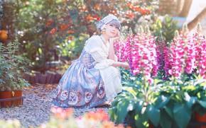 Картинка лето, девушка, свет, цветы, природа, сад, платье, наряд, розовые, азиатка, сидит, клумба, фотосессия