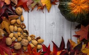 Картинка осень, листья, доски, текстура, урожай, тыква, орехи, светлый фон, кленовые, деревянный фон, грецкие, осенние листья, …