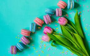 Картинка тюльпаны, розовые, pink, flowers, tulips, macaron, макаруны