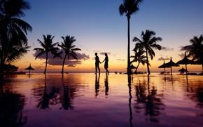 Картинка пальмы, океан, вечер, бассейн, двое, курорт, силуэты, silence, Bahamas, Cat Island, красота в природе, Beauty …