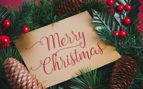 Картинка украшения, Новый Год, Рождество, Christmas, New Year, decoration, Merry, fir tree, ветки ели