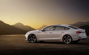 Картинка Audi, Audi A5, вид сбоку, 2019, S5 Sportback