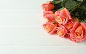 Картинка розы, букет, красивые, Atlascompany