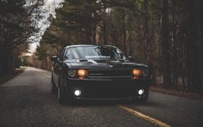 Картинка Додж, Dodge, Challenger, Dodge Challenger, Додж Челенжер