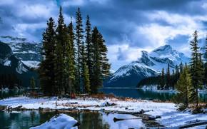Картинка снег, деревья, пейзаж, горы, тучи, природа, ели, Канада, Jasper, национальный парк, National Park, Джаспер, Maligne …