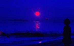 Картинка небо, вода, девушка, закат, птицы