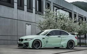 Картинка вид сбоку, tuning, 2018, Z Performance, BMW M2