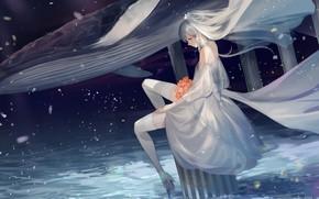 Картинка девушка, невеста, фата