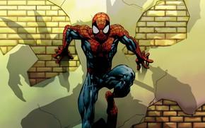 Картинка Marvel, Shadow, Comics, Spider Man, Green Goblin