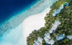 Картинка пляж, пальмы, океан, сверху, Мальдивы, курорт, Maldives, Embudu Village