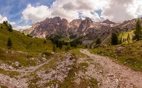 Картинка камни, горы, дорога, склоны, вершины, ели, зелень, лес, холмы, скалы, облака