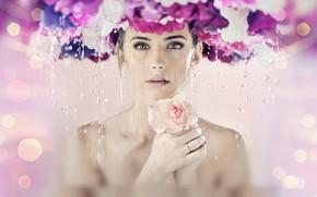 Картинка взгляд, вода, девушка, капли, цветы, роза