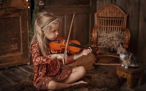 Картинка музыка, настроение, скрипка, малыш, девочка, котёнок, табурет, кресло-качалка, музицирование, слушатель