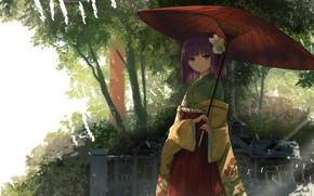Картинка девушка, природа, зонт