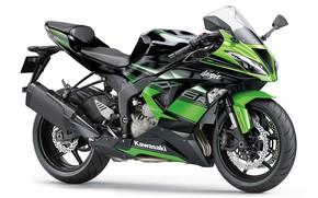 Картинка green, мотоцикл, байк, motorcycle, superbike, sportbike, фон белый, Kawasaki Ninja ZX-6