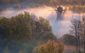 Картинка осень, деревья, пейзаж, природа, туман, рассвет, утро, мельница, Истра, Виталий Левыкин