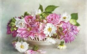 Картинка листья, цветы, ягоды, фон, букет, лепестки, арт, розовые, белые, живопись, разные, ежевика, вазочка, анемоны, георгины