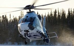 Картинка Вертолет, Airbus, Airbus Helicopters, H160, Airbus H160