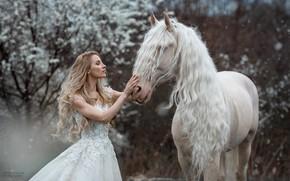 Картинка девушка, конь, лошадь, платье, блондинка, длинные волосы, Marketa Novak, Marie Renčová Kružíková, длинная грива