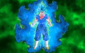 Картинка Dragon ball, dragon ball super, Vegito Dragon, Vegito Blue