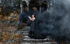 Картинка природа, поза, дым, голубь, платье, лестница, девущка, Деян Романов