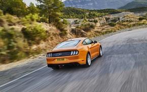 Обои Ford, дорога, 2018, фастбэк, Mustang GT 5.0, вид сзади, оранжевый