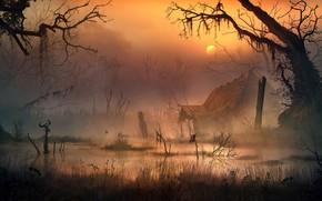 Картинка болото, смрад, Vladimir Manyukhin, The swamp witch